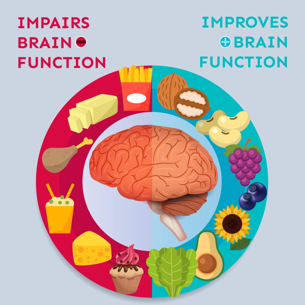 "An illustration of the human brain is surrounded by a ring, half red and half blue. On the red side are drawings of a cupcake, swiss cheese, Chinese food, a chicken leg, butter, and fries, with the words ""Impairs Brain Function."" On the blue side are pictures of leafy greens, an avocado, a sunflower, blueberries, a cluster of grapes, beans, a walnut and the words ""Improves Brain Function."""