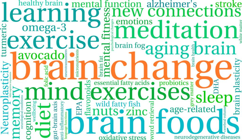 A word cluster fills a square with phrases like brain change, brain foods, brain plasticity, emotions, meditation, avocado, etc., in colors of green, blue and orange.